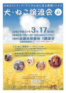 2019年 3月17日(日)「犬・ねこ譲渡会 NO.81」アニマルはにまる高槻