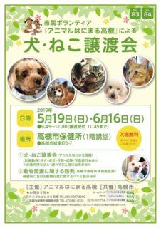 2019年 6月16日(日)「犬・ねこ譲渡会 NO.84」アニマルはにまる高槻