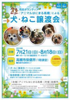 2019年 7月21日、8月18日(日)「犬・ねこ譲渡会 NO.85、86」アニマルはにまる高槻