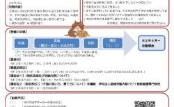 大阪府:令和2年度子猫育成サポーターを募集します!