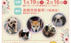 2020年 1月19日(日)、2月16日(日)「犬・ねこ譲渡会 NO.91、NO.92」場所:高槻市保健所