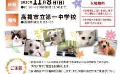2020年11月8日(日)「犬・ねこ譲渡会 NO.95」アニマルはにまる高槻
