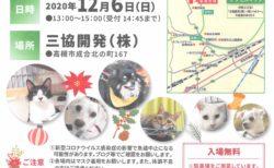2020年12月6日(日)「犬・ねこ譲渡会 NO.96」アニマルはにまる高槻